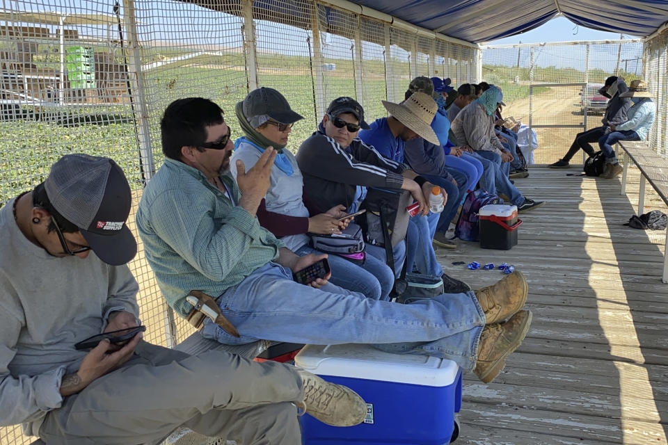 Farmworkers at Del Bosque Farms take a break from picking melons in Firebaugh, Calif., on Friday, July 9, 2021, where temperatures were expected to surpass 110 degrees this weekend. (AP Photo/Terry Chea)