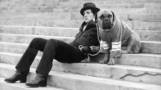 Sylvester Stallone Says It Was His Dog Butkus' Idea to Write Rocky