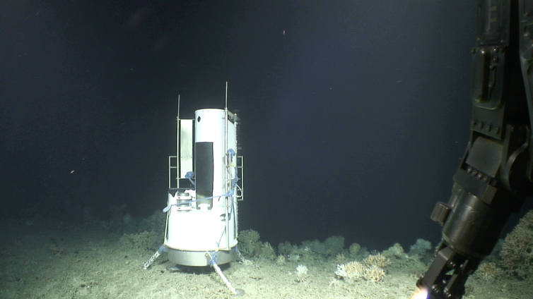 Scientific equipment beside some coral, deep ocean canyon in background.
