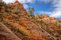 """The iconic route of Observation Point Trail, in an equally notorious national park, is even more of a must-hike come fall: At the top—6,521 feet in elevation—you'll have wide-open views of one of the widest parts of the canyon, with an amazing burst of yellow, orange, and red trees. It's also great for those who have been sleeping on booking that fall trip. Since <a href=""""https://www.cntraveler.com/stories/2016-02-17/utah-zion-national-park-like-youve-never-seen-it-before?mbid=synd_yahoo_rss"""" rel=""""nofollow noopener"""" target=""""_blank"""" data-ylk=""""slk:Zion"""" class=""""link rapid-noclick-resp"""">Zion</a> isn't sky-high in elevation, fall comes a bit later, which means you'll still find autumn leaves in November."""