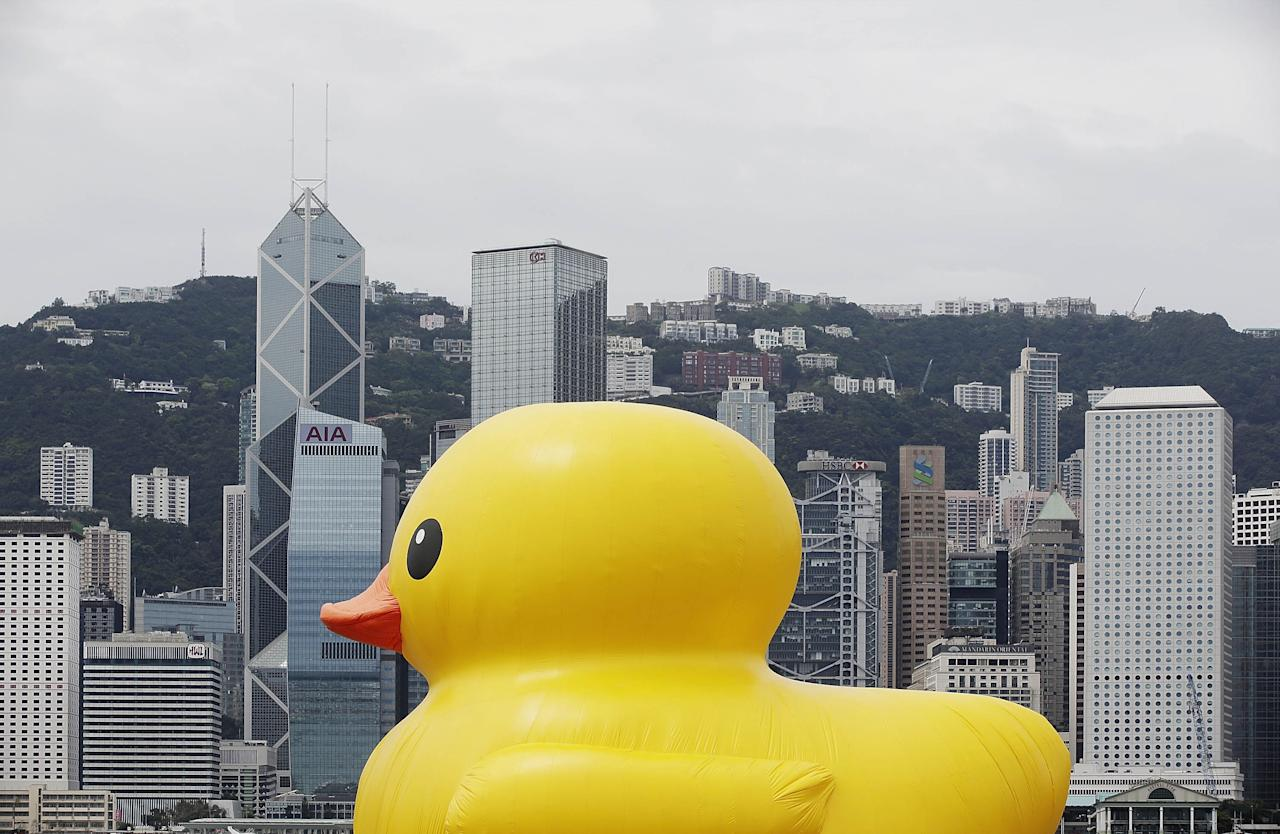 """HONG KONG - MAY 02:  Dutch conceptual artist, Florentijin Hofman's Floating duck sculpture called """"Spreading Joy Around the World"""", is moved into Victoria Harbour on May 2, 2013 in Hong Kong. The """"Rubber Duck"""", which is 16.5 meters high, will be in Hong Kong from May 2 to June 9. Since 2007, """"Rubber Duck"""" has been traveling to 10 countries and 12 cities. (Photo by Jessica Hromas/Getty Images)"""