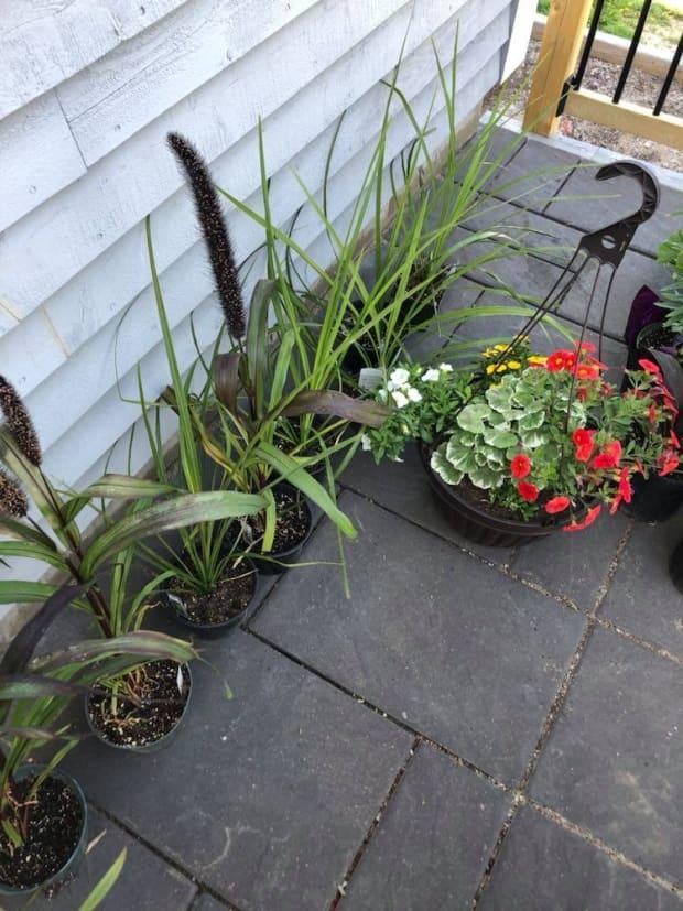 Planters and hanging flower baskets have also become a popular item this spring.