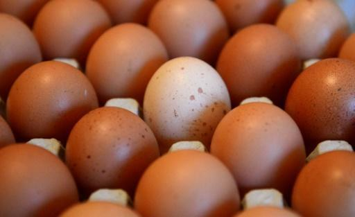 A new study has found that rather than being harmful to human health, eating an egg a day may actually keep the doctor away