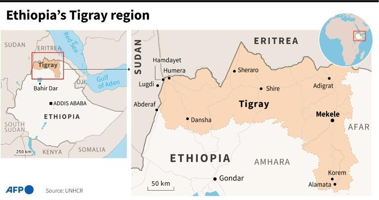 Ethiopia's Tigray region and neighbouring countries (AFP/Sophie RAMIS)