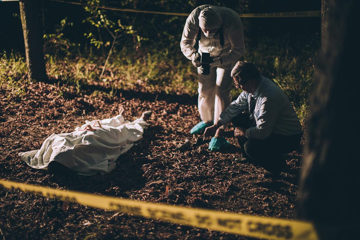Investigation of a crime scene, that happened in the forest.