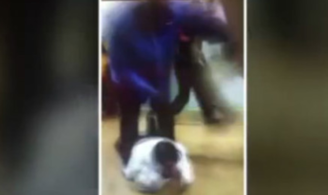 A student viciously attacked a substitute teacher after she informed the administration that he brought drugs to school. (Photo: Fox 2)