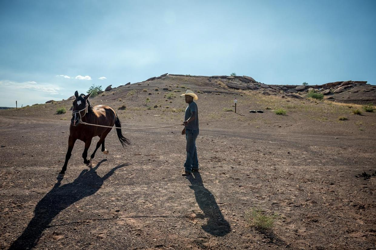 James Williams is pictured tending to his horses at his family home in Cameron, AZ, next to A&B No. 3 mine, one of over 100 abandoned uranium mines in and around Cameron.(Photograph by Mary F. Calvert)