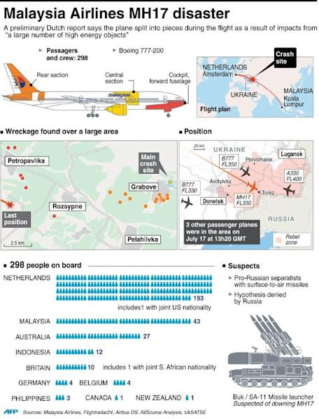 The Malaysia Airlines MH17 disaster