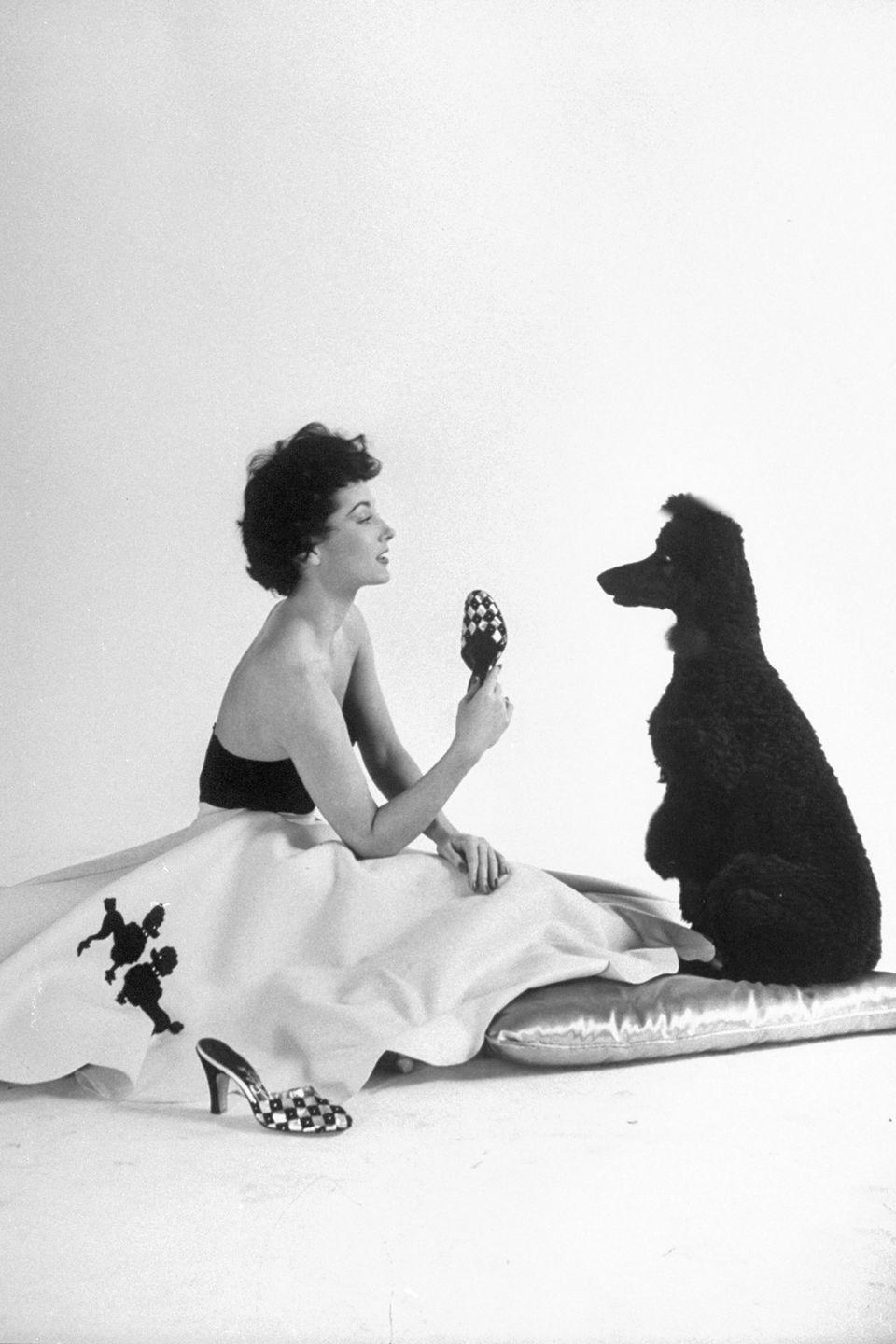 <p>Poodle not included. </p>