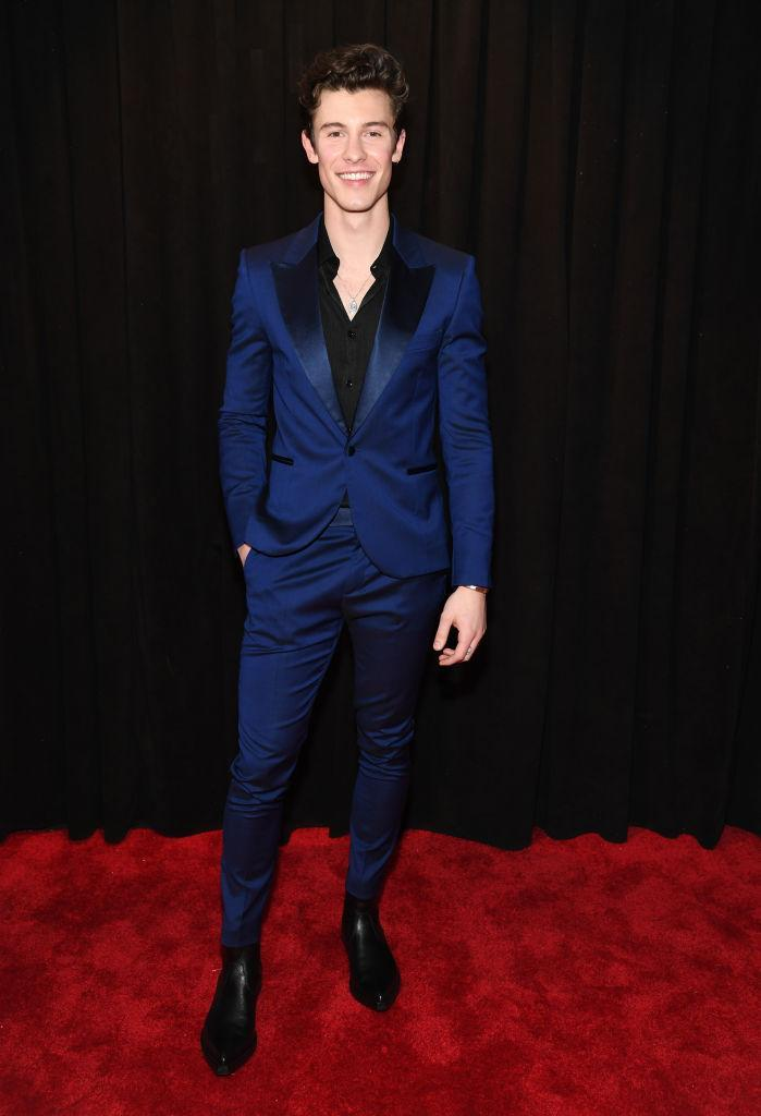 <p>Shawn Mendes, a nominee and presenter, was feeling blue in a sleek suit. </p>