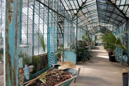 "Inside view of a greenhouse at the botanical garden ""Jardin des Serres d'Auteuil"" in Paris"
