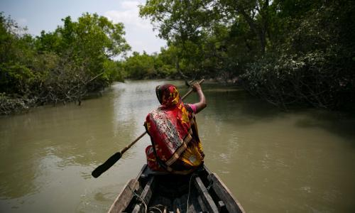 The Sundarbans crab farmers battling climate crisis – and pirates
