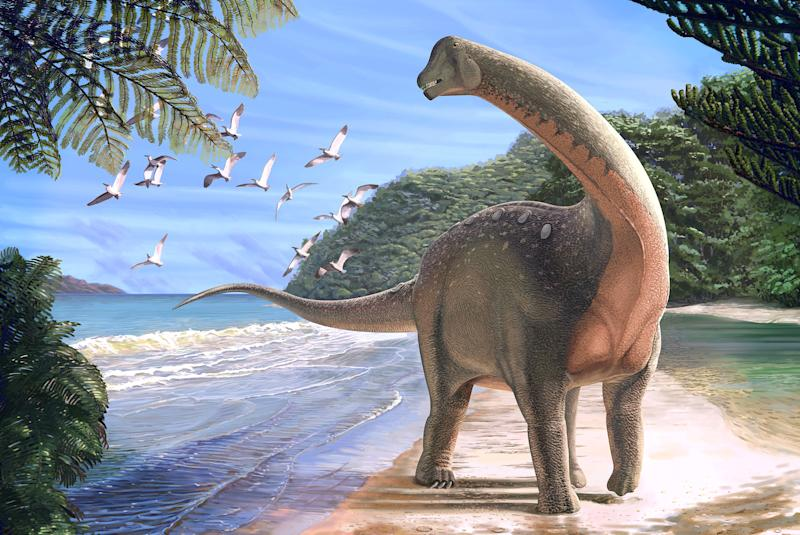 New Species of Titanosaur Unearthed in Egypt: Mansourasaurus shahinae