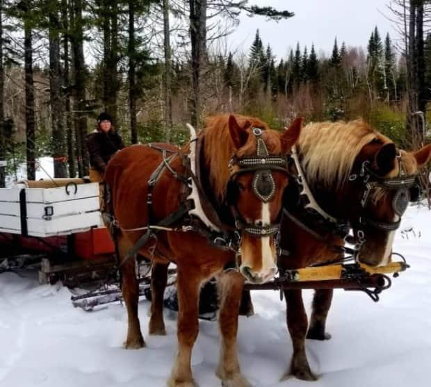 Horseback riding and family sleigh rides are the ideal pandemic activity because it is easy to maintain physical distancing, said Wendy Hudson of Broadleaf Ranch. Adventure activities have been in high demand for the past year.
