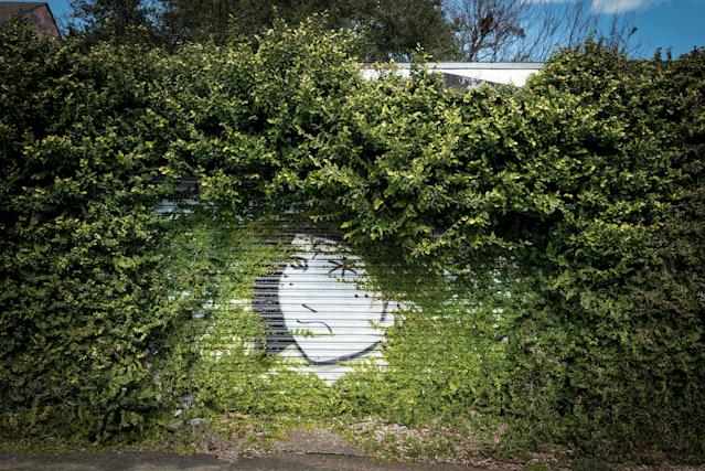 <p>Overgrowth in New Orleans. (Photo: Johnny Joo/Caters News) </p>