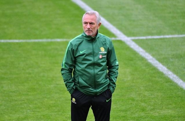 Bert van Marwijk led the Netherlands to the 2010 World Cup final