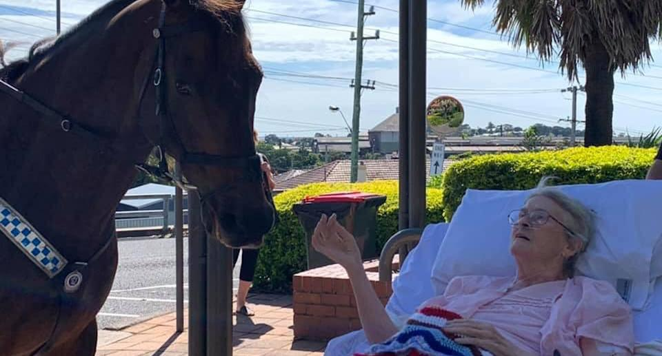 Rita Meredith (nee Browning) with one of the NSW Mounted Police Horses. Photo Credit: NSW Mounted Police