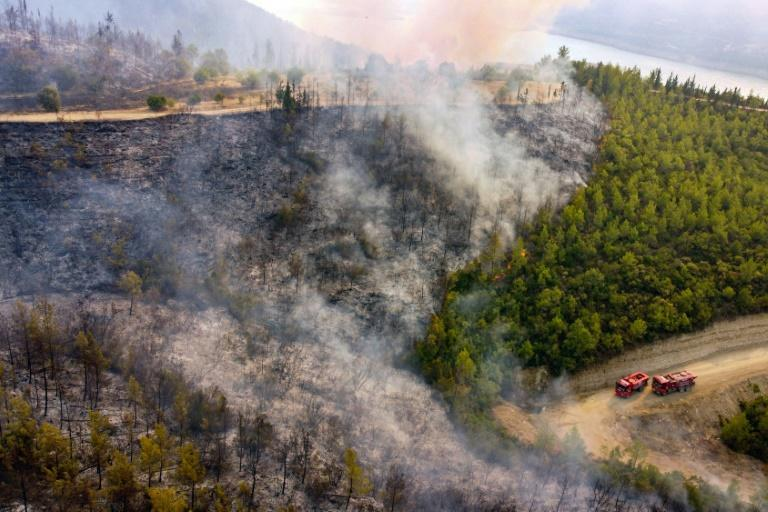 Agriculture and Forestry Minister Bekir Pakdemirli said 111 forest fires were under control, while five blazes continued in the holiday regions of Antalya and Mugla