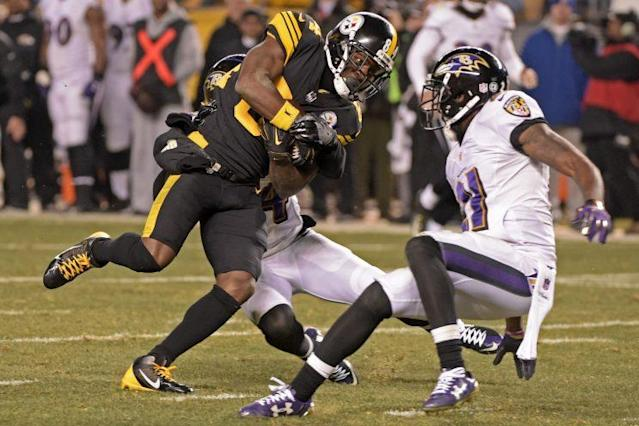 Antonio Brown's touchdown with nine seconds left brought Pittsburgh an AFC North title. (AP)