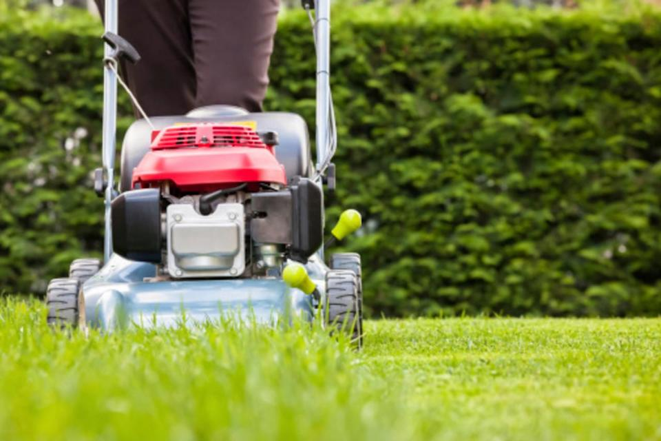 Fall is a critical time for lawn care, here's what you need to know