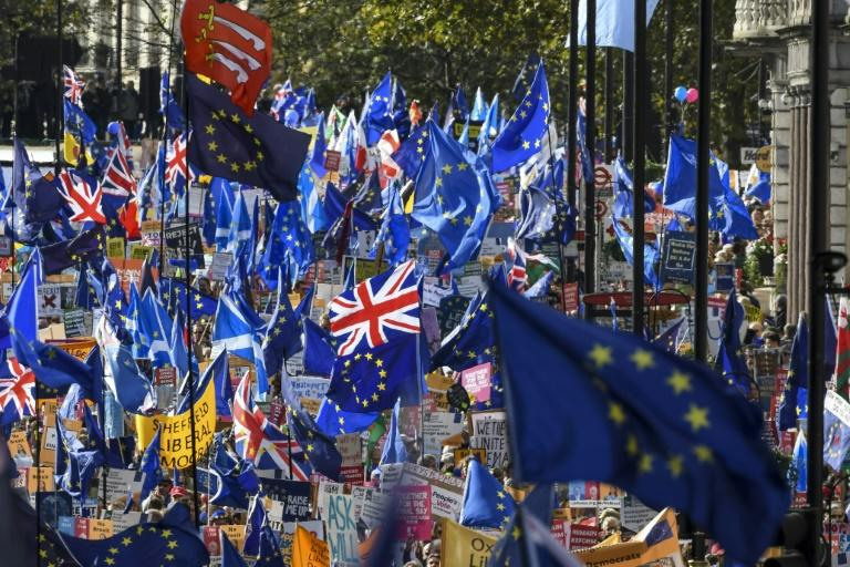 Hundreds of thousands rallied in London on Saturday demanding a second national vote on Brexit (AFP Photo/Niklas HALLE'N)