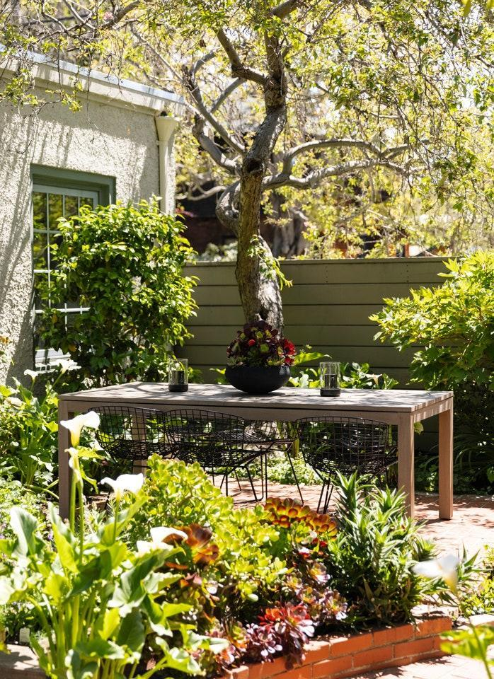 """""""A lot of species thrive out here without water,"""" says Alataris, who has planted a herb garden and is working on incorporating more drought-resistant species as she takes on the grounds."""