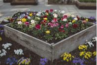 <p>Balance a rustic wood box with vibrant flowers that showcase the colors of summer.</p>
