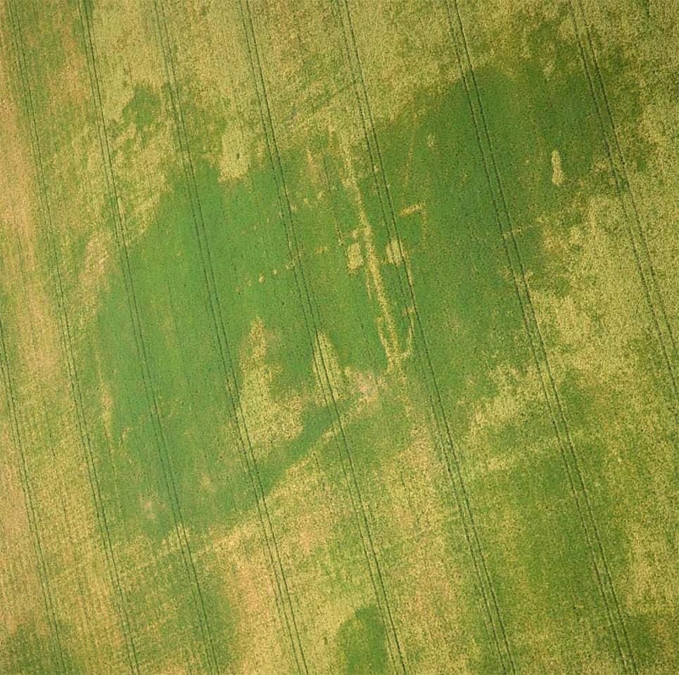 The Y-shaped Roman structure, discovered in eastern England in the Norfolk area, can be seen in this aerial shot. Nothing like it has been discovered before from the Roman Empire. Sometime later another Roman structure (whose postholes can be seen) was built on top of it. CREDIT: Michael Page