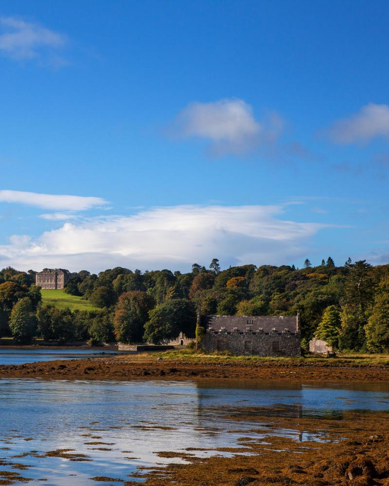 Distant 18th Century Castleward on the banks of Strangford Lough, County Down, Northern IrelandF9N3JP Distant 18th Century Castleward on the banks of Strangford Lough, County Down, Northern Ireland