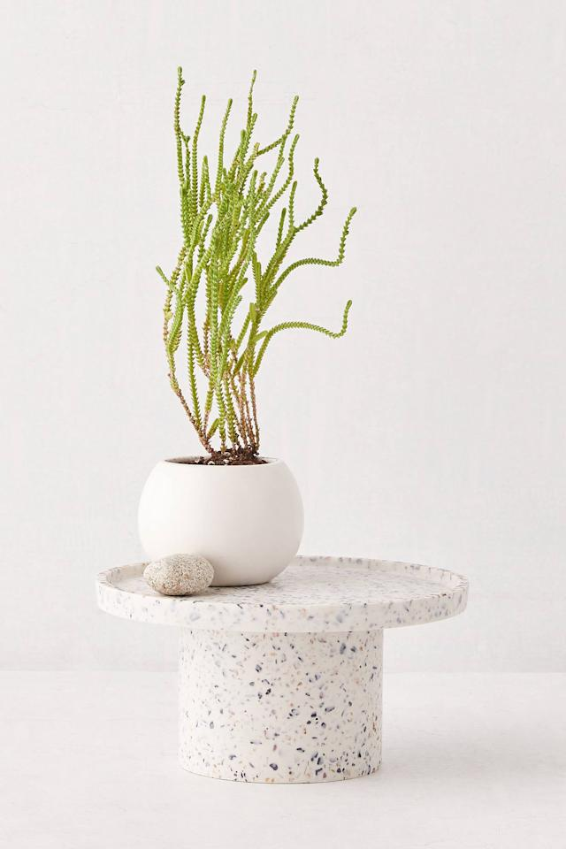 """<p>How cool is this <a href=""""https://www.popsugar.com/buy/Finn-Terrazzo-Planter-Stand-555109?p_name=Finn%20Terrazzo%20Planter%20Stand&retailer=urbanoutfitters.com&pid=555109&price=39&evar1=casa%3Aus&evar9=47304099&evar98=https%3A%2F%2Fwww.popsugar.com%2Fhome%2Fphoto-gallery%2F47304099%2Fimage%2F47304184%2FFinn-Terrazzo-Planter-Stand&list1=shopping%2Chome%20decor%2Cdecor%20shopping%2Chome%20shopping&prop13=api&pdata=1"""" rel=""""nofollow"""" data-shoppable-link=""""1"""" target=""""_blank"""" class=""""ga-track"""" data-ga-category=""""Related"""" data-ga-label=""""https://www.urbanoutfitters.com/shop/finn-terrazzo-planter-stand?category=apartment-room-decor&amp;color=011&amp;type=REGULAR&amp;size=L&amp;quantity=1"""" data-ga-action=""""In-Line Links"""">Finn Terrazzo Planter Stand</a> ($39)?</p>"""
