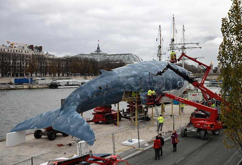Workers construct a giant whale sculpture along the side of the river Seine on November 29, 2015 in Paris on the eve of the COP21 conference on climate change (AFP Photo/Eric Fefferberg)