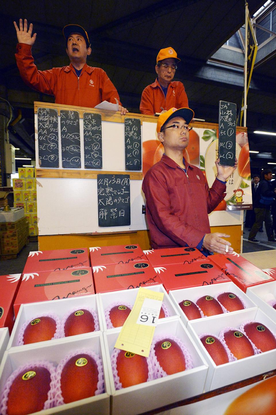 A pair of mangos is auctioned off at the wholesale market in Miyazaki in Japan's southern island of Kyushu for some 300,000 yen (2,500 USD) on April 13, 2015.  The high-priced mangoes, called