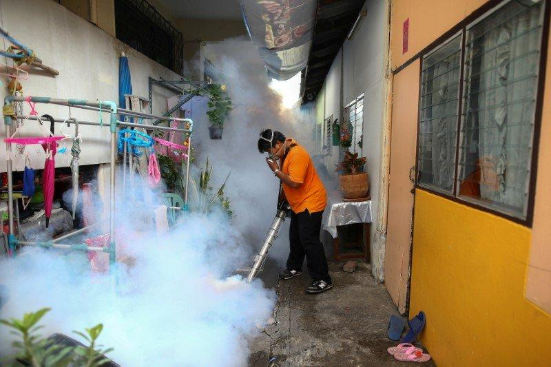 Thailand has confirmed two cases of microcephaly caused by the Zika virus, the first time the A city worker fumigates the area to control the spread of mosquitoes at a university in Bangkok, Thailand, September 13, 2016. REUTERS/Athit Perawongmetha/File Photo