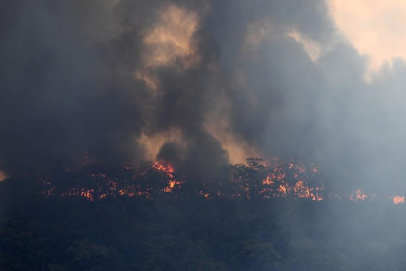 The Gospers Mountain fire is seen burning in bushland near Colo Heights