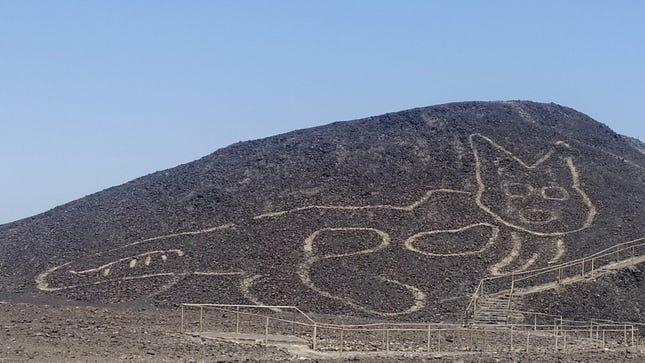 Peru's Ministry of Culture announced last week that a massive figure of a cat was found etched into a hillside.