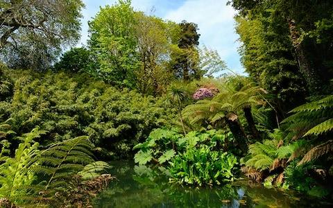 The Lost Gardens Heligan - Credit: MARTIN SIEPMANN
