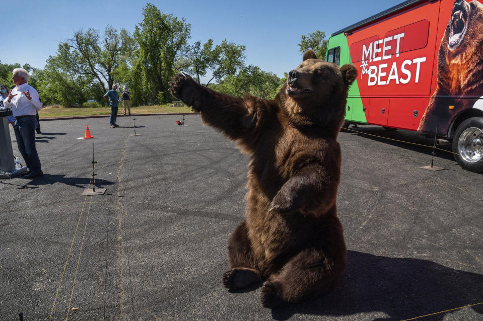 """John Cox, far left, begins his recall campaign for California governor with """"Tag,"""" a Kodiak brown bear, on Tuesday, May 4, 2021 in Sacramento. It was the first stop for his """"Meet the Beast"""" bus tour. (Renee C. Byer/The Sacramento Bee via AP)"""