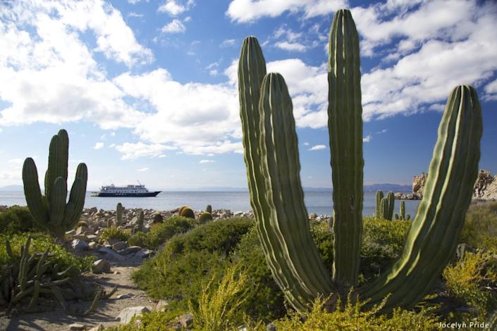 """Un-Cruise Adventures offers adventurous excursions on cruises in Mexico's Sea of Cortez. <span class=""""copyright"""">(Un-Cruise Adventures)</span>"""