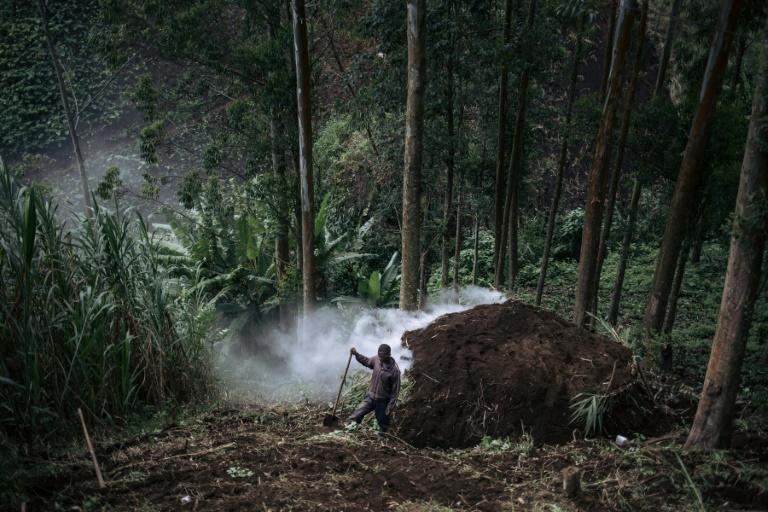 The WWF is among groups trying to minimise the impact of charcoal burning by introducing more efficient ovens (AFP Photo/ALEXIS HUGUET)