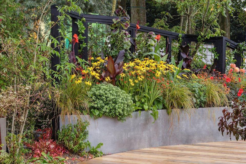 <p><strong>FEATURE GARDEN | (not judged)</strong></p><p>Designed by Marie-Louise Agius, this garden demonstrates how gardens, plants and green spaces can play an integral part in protecting our planet and people and ensure a greener, more resilient future for us all.</p>