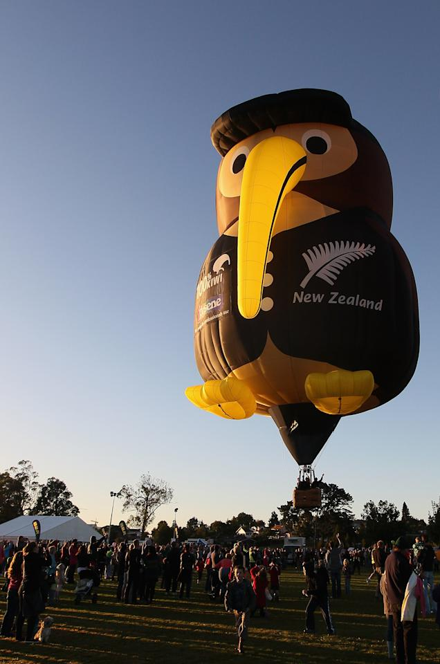 The Kiwi balloon rises over Innes Common Park on March 29, 2012 in Hamilton, New Zealand. Each Autumn over 30 hot air balloons grace the sky as part of the Balloons Over Waikato Festival.  (Photo by Sandra Mu/Getty Images)