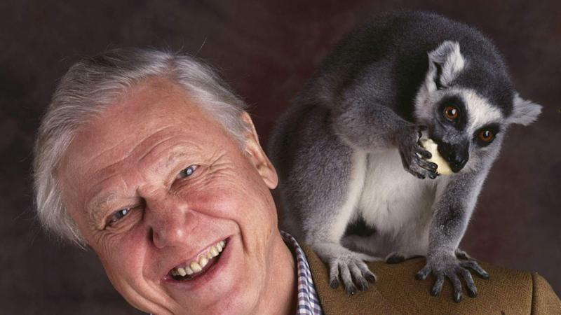 App-y Birthday: David Attenborough Turns 90
