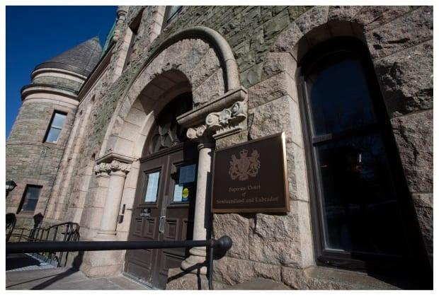 An application filed Monday at the Supreme Court in St. John's argues that the provincial election was illegal and should not be considered valid. (Paul Daly/CBC - image credit)