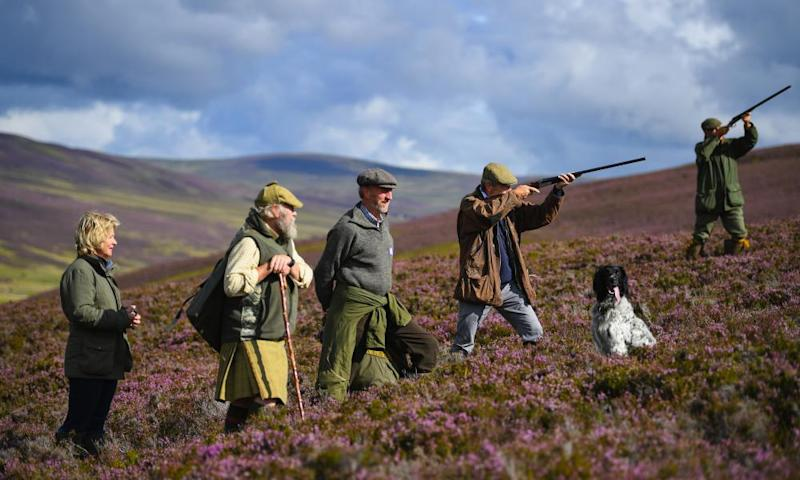 A shooting party on moors at the Alvie estate in Aviemore, Scotland, yesterday. The Glorious Twelfth signals the start of the grouse shooting season.
