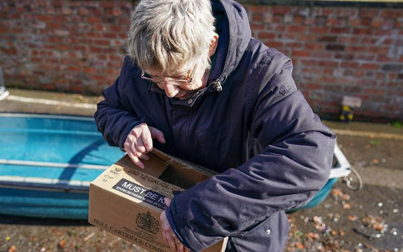 A woman checks on her pet chinchilla in a cardboard box - Ian Forsyth/Getty Images Europe