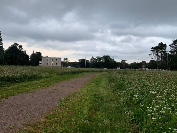 The City of Charlottetown is planning to develop the former Prince Edward Home site as a green space that would be connected to Victoria Park. (Shane Ross/CBC - image credit)