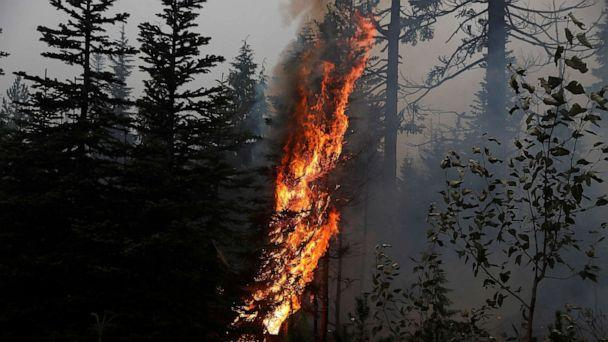 PHOTO: Fire burns on the remains of fire damaged trees as smoke billows in the aftermath of the Beachie Creek fire near Detroit, Ore., Sept. 14, 2020. (Shannon Stapleton/Reuters)