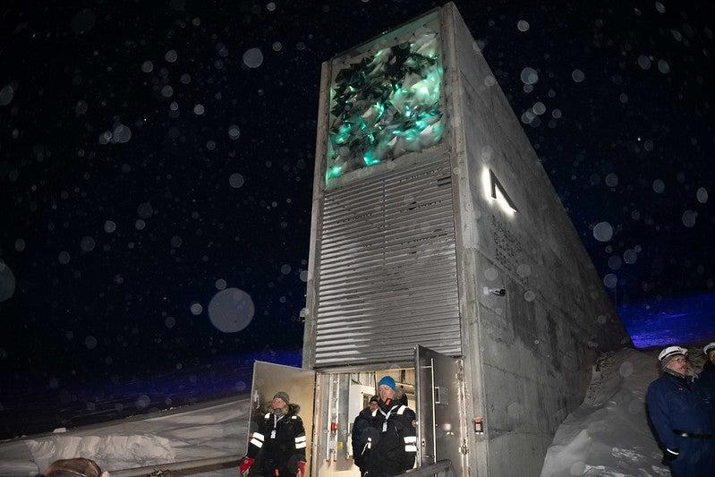 The Svalbard Global Seed Vault which stores the world's largest collection of crop diversity: Crop Trust