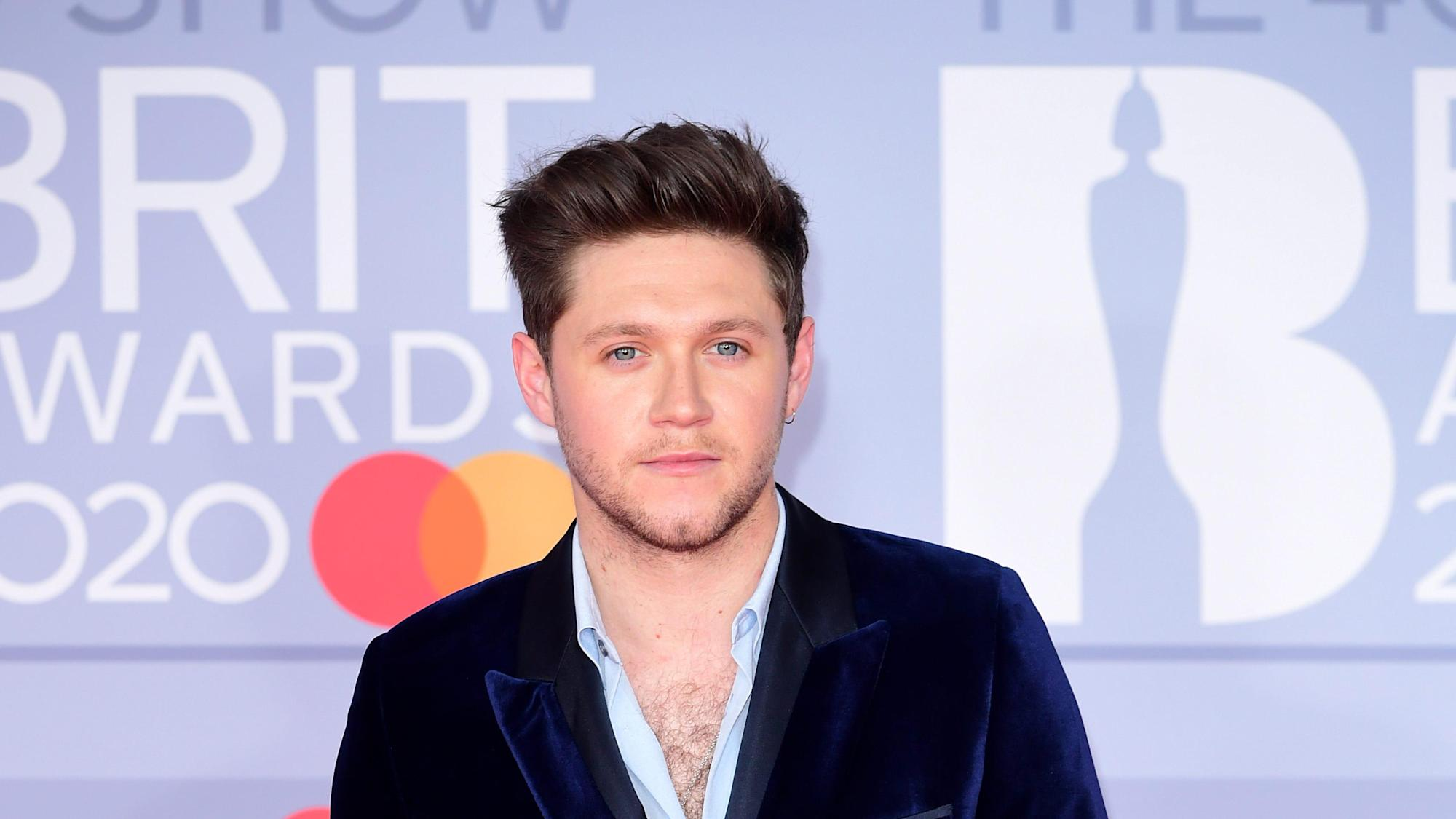 Niall Horan reveals his thoughts on a One Direction reunion