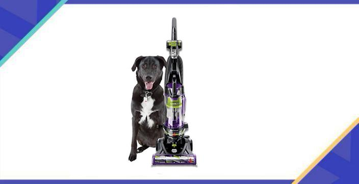 Pet hair doesn't stand a chance. (Photo: Walmart)